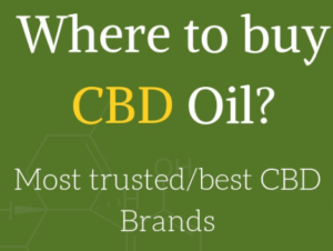 Where To Buy CBD Oil?