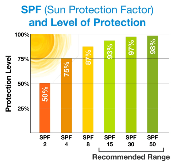 SPF Protection Chart
